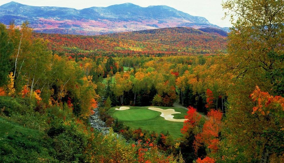 PGA Tour Featured Picture.jpg