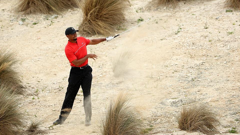 Tiger Woods 2.jpg